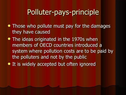 polluter-pays
